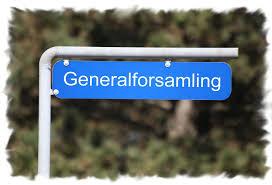 nbs generalforsamling
